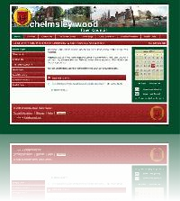 Chelmsley Wood Town Council